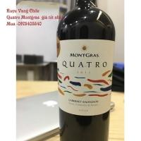 Rượu Vang Chi Lê Quatro Montgras 750ml giá tốt nhất