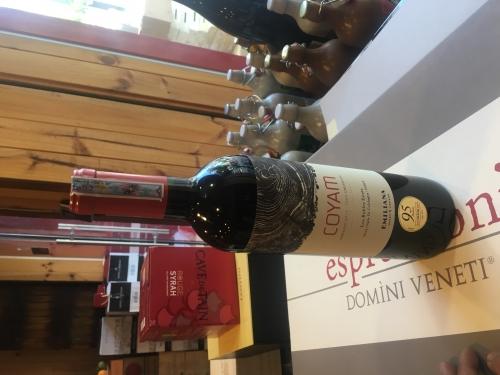 Rượu vang đỏ Chile Organic Coyam