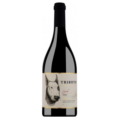 Rượu Vang Tributo Seleccion Syrah